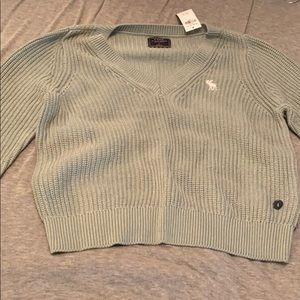Icon V-Neck Sweater